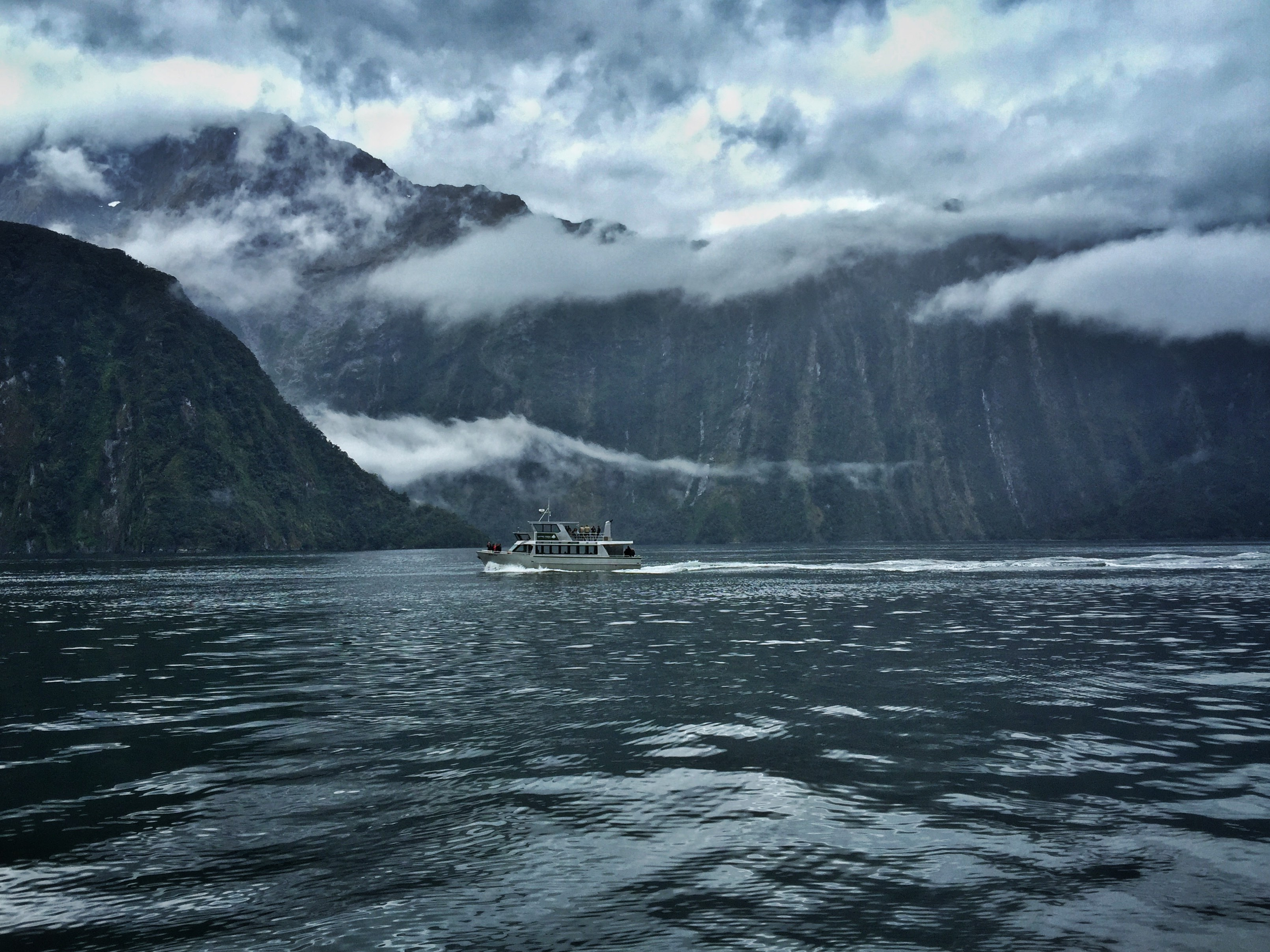 milford-sound-boat